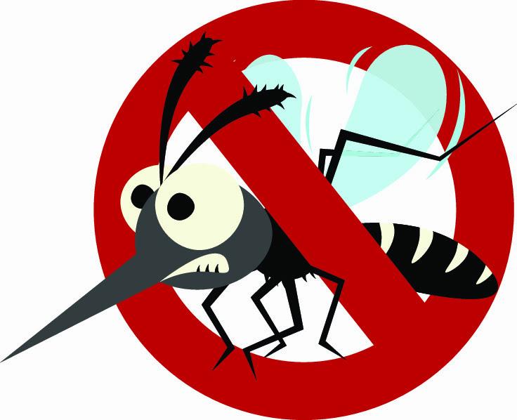 Proste sposoby na komary i meszki – przed i po ukąszeniu