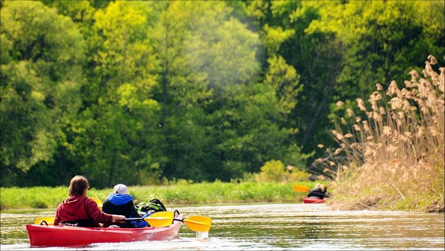 Spływ kajakowy – pomysł na udane wakacje 2020
