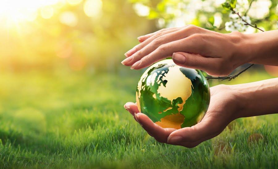 Jak dbać o środowisko na dużą i mniejszą skalę?