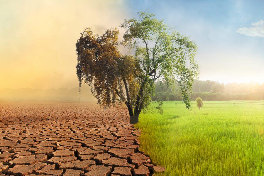 Ocieplenie klimatu – fakty i mity