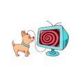 Piesek podłączony do telewizora zahipnotyzowany wiadomościami